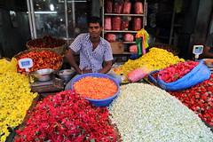 Le march au fleurs (Chemose) Tags: flowers portrait india fleurs canon eos market january 7d janvier march tamilnadu inde pondicherry southindia pondichry puducherry indedusud