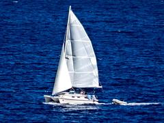 looks like fun (-gregg-) Tags: ocean blue sun boat sail bahamas