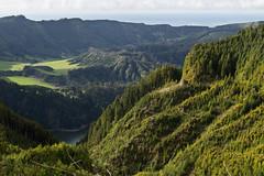 Layered Trees (Steve Vallis) Tags: ocean trees lake portugal landscape caldera volcanic azores