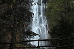 Pissevache (bulbocode909) Tags: nature eau suisse arbres valais montagnes vernayaz pissevache forts