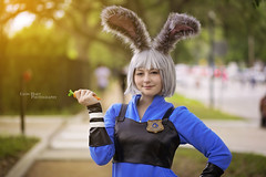 Judy Hopps - Zootopia (Lyon Hart Photography) Tags: park festival japan movie photography furry texas photoshoot cosplay outdoor houston disney pixar herman furries judy cosplayer hermann jfest 2016 hopps zootopia cosplayphotography