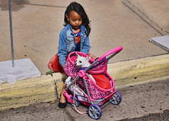 Pet Parade 2 (Helen Orozco) Tags: pet chihuahua hill albuquerque parade supergirl nobhill nob superdog