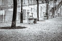 Jardim de pedra (p_v a l d i v i e s o) Tags: bw portugal monochrome lisboa lisbon canon5d lissabon parkbench lisbona caladaportuguesa monocromtico monocromatico 24105mm splittoning canonef24105mmf4lisusm ef24105mmf4 monocromatique canon5dmk3 canoneos5dmarkiii 5d3 reametropolitanadelisboa
