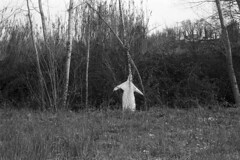 He found ghosts (Marcello Iannotta) Tags: tree film 35mm photography nikon ghosts fm3a kodaktmax100 filmsnotdead