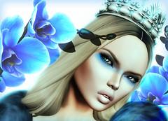 Blue Angel (Honey Bender1) Tags: blue hair mesh makeup versus ison honeybender originalmesh zibska