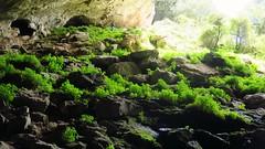 Balzola Cave (arka76) Tags: naturaleza nature cave bizkaia euskalherria euskadi dima basquecountry cuevas koba balzola baltzolakokobak