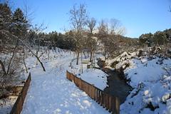 Çayırova'dan Kar Manzaraları 29