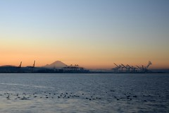 Mount Rainier Sunrise (zenseas) Tags: seattle morning winter mountains cold sunrise pier early washington waterfront mountrainier rainier pugetsound elliottbay pier70 coldmorning