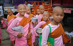 Disciple monks go out on alms in Mandalay (Bn) Tags: life road street city pink orange feet boys girl smile modern umbrella four movement topf50 rice emotion sandals candid burma joy shaved lifestyle monk buddhism nun nuns monastery monks friendly myanmar meditation spiritual joyful enlightenment burmese topf100 birma mandalay monastic robes disciple alms meditative novice ceremonial devote theravada 100faves 50faves eomotions littleteacher bhikkhuni earthenred