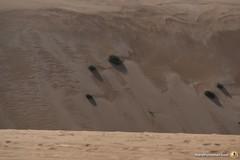 3-Oman-Desert-Marathon-Day-6_6757