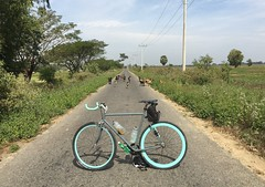 Myanmar, Ayeyarwady Region, Pathein District, Kyonpyaw Township, Aing Ma Village Tract (Die Welt, wie ich sie vorfand) Tags: bicycle cycling burma delta goats myanmar steamroller surly irrawaddy pathein ayeyarwady ayeyarwadyregion patheindistrict aingmavillagetract kyonpyawtownship