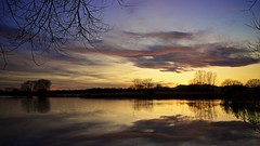 Purple & gold (Caropaulus) Tags: blue sunset sky sun reflection water gold evening soleil purple flood bleu ciel alsace inondation flooded ried