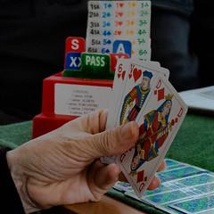 """Une passion  """"le bridge"""" (beatricedrevon) Tags: cartes jeux jeudecartebridge"""