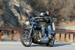 Harley-Davidson 1601310443w (gparet) Tags: road bridge couple curves scenic couples motorcycles bearmountain motorcycle overlook windingroad twisties goatpath goattrail