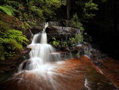 Britannia Beauty (Peter Hill1) Tags: longexposure landscape waterfall bluemountains peterhill bluemountainsnationalpark valleyofthewaters canoneos5dmarkii canontse24mmf35lii britanniafalls
