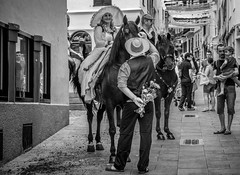 These flowers are for you (in explore) (robertofaccenda.it) Tags: trip travel vacation españa horse animals caballo spain seasons estate streetphotography d750 streetphoto viaggi cavallo animali holydays menorca vacanze spagna stagioni baleares mahon minorca baleari caval fotografiadistrada