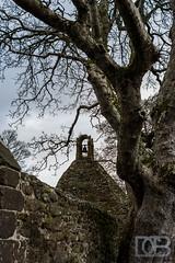 The Auld Kirk (@CubePhotos) Tags: plant tree robert church cemetery grave graveyard photoshop scotland nikon o outdoor 5 south ruin scottish burns gravestone 24mm ayr f28 tam kirk lightroom ayrshire southayrshire shanter cs6 alloway d7100 nikon lightroom5