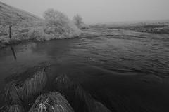 Le Bs, givr sur les bords (Michel Seguret thanks you all for + 8.1 M views) Tags: winter france cold ice nature hiver natur natura pro invierno kalt inverno froid frio givre lozere aubrac gevaudan michelseguret