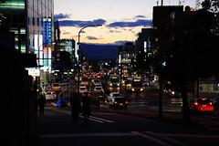 (CJWayne1986) Tags: light japan night nikon nightlight  nara kansai  d700