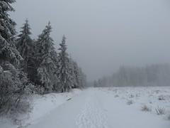 IMG_8548 (Bike and hiker) Tags: winter mist hiver sneeuw neige venn hoge hautes fagnes venen hohes botrange neur bayehon low