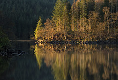 Loch Ard, Scotland (J McSporran) Tags: sunrise reflections landscape scotland trossachs robroy lochard