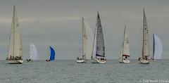 Club Nutic L'Escala - Puerto deportivo Costa Brava (nauticescala) Tags: navegar costabrava regatas regata crucero comodor creuer velesdempuries