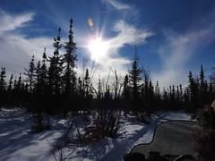 DSCN1007 (delirious_equilibrium) Tags: snow alaska fairbanks snowmobiling snowmachining