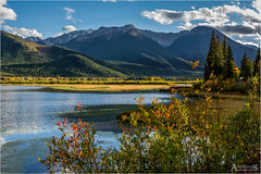 Vermilion Lakes (explored) (AdelheidS photography) Tags: trees mountain lake canada mountains scenery alberta banff mountrundle vermillionlakes travelphotography vermilionlakes adelheidspictures adelheidsmitt adelheidsphotography