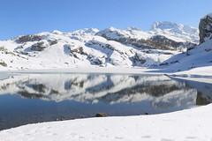EL LAGO DE LA ERCINA EN INVIERNO (3) (mflinera) Tags: de lago la nieve asturias ercina cangas onis