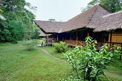 Tambopata Research Center in Peru-01 5-31-15 (lamsongf) Tags: travel peru southamerica tambopata amazonbasin
