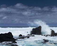 DSC_5328 e5 (J Telljohann) Tags: hawaii maui hookipa