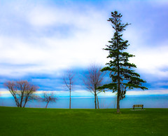 Earth Day 2016 - Trees for the Earth (A Great Capture) Tags: blue trees lake toronto ontario canada tree green water bench landscape for spring day photographer earth empty natura canadian climatechange mothernature springtime on agc naturelovers 2016 savetheplanet ald jamesmitchell earthdayeveryday ash2276 adjm ashleylduffus wwwagreatcapturecom agreatcapture mobilejay treesfortheearth earthday2016