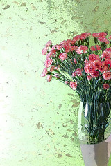 Pink Carnations In A Vase (Malisa Nicolau) Tags: pink flowers red plants white color green leaves petals colorful soft softness decoration celebration event stamen stems bouquet decor carnations dianthuscaryophyllus