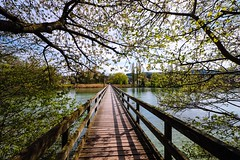 The way it is (Gerd Kozik) Tags: bridge sun tree nature water reflections river spring swiss think dream silence ways werd lakeconstance southerngermany yarinasanth gerdkozik