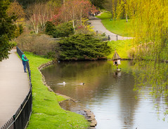 worth watching..... (dtapkir) Tags: flowers trees people sun house lake green london nature water colors grass sunshine birds kids pond nikon scenery thought branch child path d750 serene englanduk
