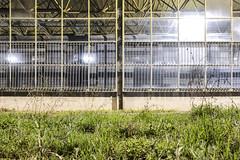 hello metro 02. (TheMutantCow / MutnsTehn) Tags: city night underground subway hungary metro capital budapest transportation ubahn utca este buda pest bkk bkv metr remiz jszaka garzs kbnya kzlekeds kr krutca 3metro