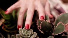 en calma leve desenfoca (teleoalreves) Tags: life plants green love colors digital canon 50mm photo hands experiment explore nails blured 2016 teleoalreves