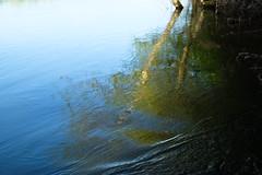 DSCF0956 (kuzdra) Tags: france riviere fujifilm loire courant вода anjou отражение laloire отражения xt10 франция луара анжу fujifilmxt10 водныеотражения