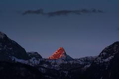 (crosslens) Tags: alpenglow knigssee malerwinkel schnfeldspitze