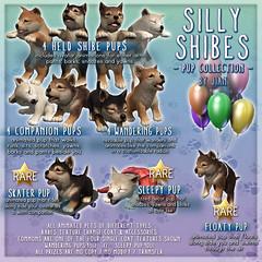 JIAN :: Silly Shibes (@ The Epiphany) ([JIAN]) Tags: pets silly cute dogs animals puppy fun puppies adorable kawaii shibainu jian canines shibe