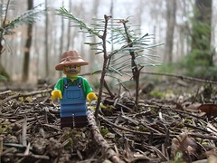 Waldbauer (captain_joe) Tags: toy lego minifig wald spielzeug tanne minifigure series15 365toyproject