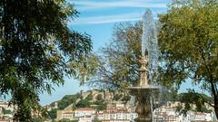 107 de 365 (pico_de_la_miel) Tags: luz portugal lisboa plazas fuentes recuerdos alfama saudades jardn castelodesojorge murallas olisipo miradores ras