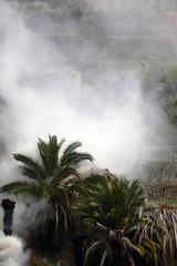Smoke (m-blacks) Tags: trees italy panorama mountain green nature landscape coast mediterranean italia smoke liguria hill border confine burning land terra fumo ventimiglia bordighera