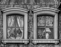 Pair of windows (FotoGrazio) Tags: windows two blackandwhite stilllife art texture lamp monochrome lines architecture composition contrast photography design pattern photoshoot geometry framed pair fineart highcontrast structure pottedplants together frame curtains moment photographicart capture digitalphotography apair buildingwindows sandiegophotographer artofphotography flickrelite californiaphotographer internationalphotographers worldphotographer photographersinsandiego fotograzio photographersincalifornia waynegrazio waynesgrazio