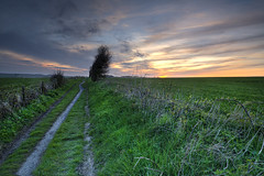 The long and winding track (Through Bri`s Lens) Tags: sunset sky tree field fence sussex bush track skies path farm crop brambles brianspicer lee09softgrad canon5dmk3 canon1635f4