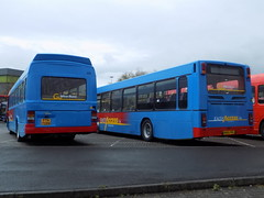 4708 FTN 708W Go Wear Buses Leyland National  & 4855 R855 PRG Go Northern Volvo B10BLE Wright Renown at MetroCentre Bus Rally 2016 (2) (North East Malarkey) Tags: nebuses bus buses transportation transport vehicle publictransport flickr public goaheadnorthern goaheadnortheast goaheadgroup gonorthern 4855 r855prg volvob10ble volvob10blewrightrenown wrightrenown wrightbus gowearbuses ftn708w 4708 leyland leylandnational northernnationalrestorationgroup nnrg explore