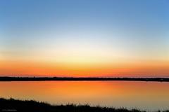 Tramonto sulle saline (giovannispina31) Tags: sunset sky italy heron water birds twilight saline romagna aironi