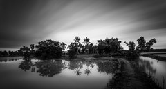 Black And White (Febri Manuel Melano Manusiwa) Tags: indonesia landscape bigstop leefilter nikond810