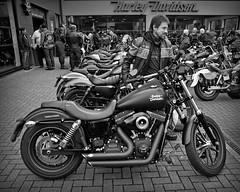 More Dealer Day's.. (Harleynik Rides Again.) Tags: harley special streetbob harleynikridesagain