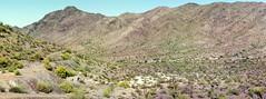 South Mountain, Arizona (wyatthalchishick) Tags: arizona panorama mountains film fuji superia 400 nikkormat